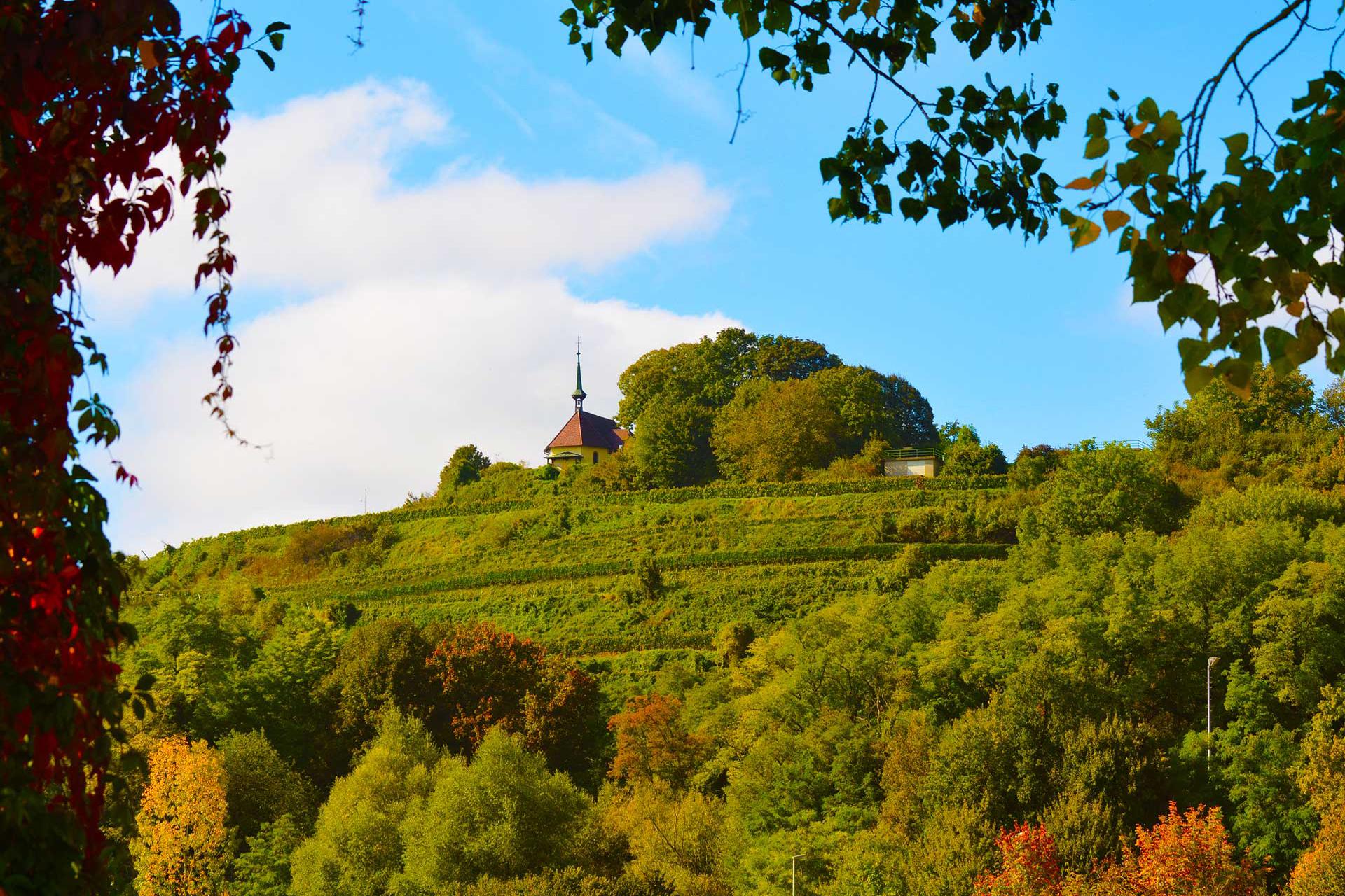 Landschaft_Munzingen_3